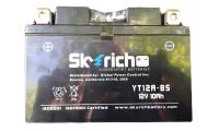 Аккумулятор SKYRICH YT12A-BS